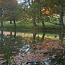 Autumn Reflections by RedHillDigital