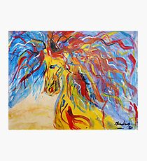 Coloured Horse Photographic Print