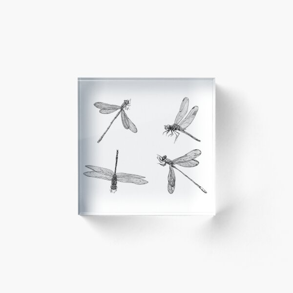 Dragonfly Flurry Acrylic Block