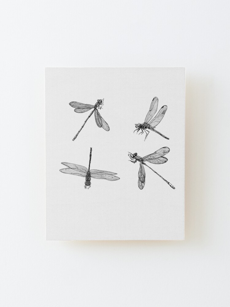 Alternate view of Dragonfly Flurry Mounted Print