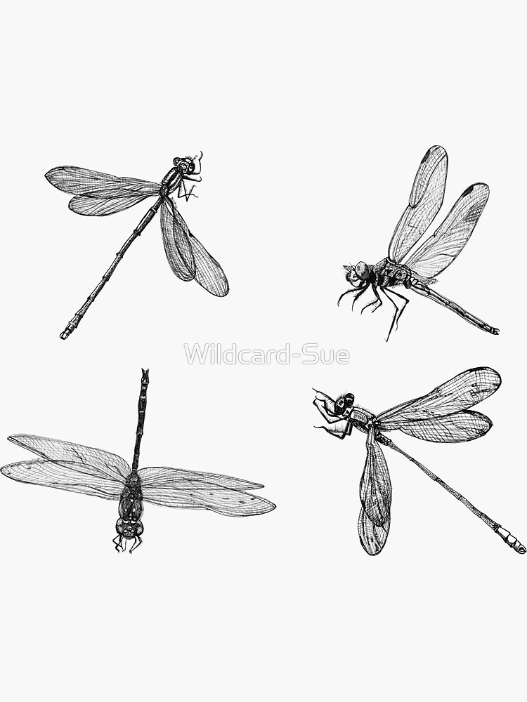 Dragonfly x 4 stickers by Wildcard-Sue
