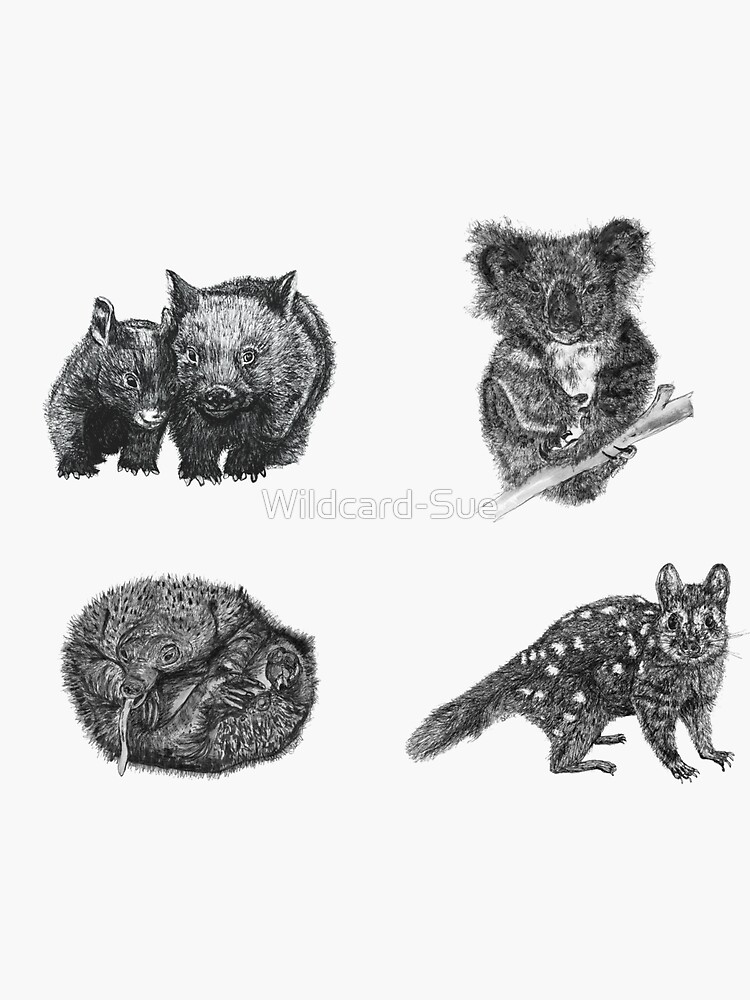 Land stickers 1- wombat, koala, echidna and quoll x 4 stickers by Wildcard-Sue