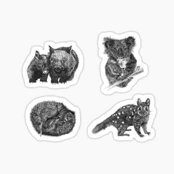 Land stickers 1- wombat, koala, echidna and quoll x 4 stickers Sticker