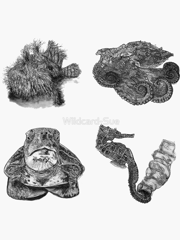 Sea 1 - Angler, Octopus, Turtle and Seahorse x 4  by Wildcard-Sue