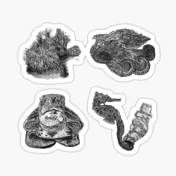 Sea 1 - Angler, Octopus, Turtle and Seahorse x 4  Sticker