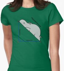 Math Humor Womens Fitted T-Shirt