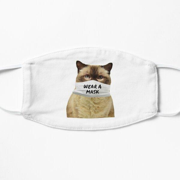 Cute Cat In A Mask Flat Mask