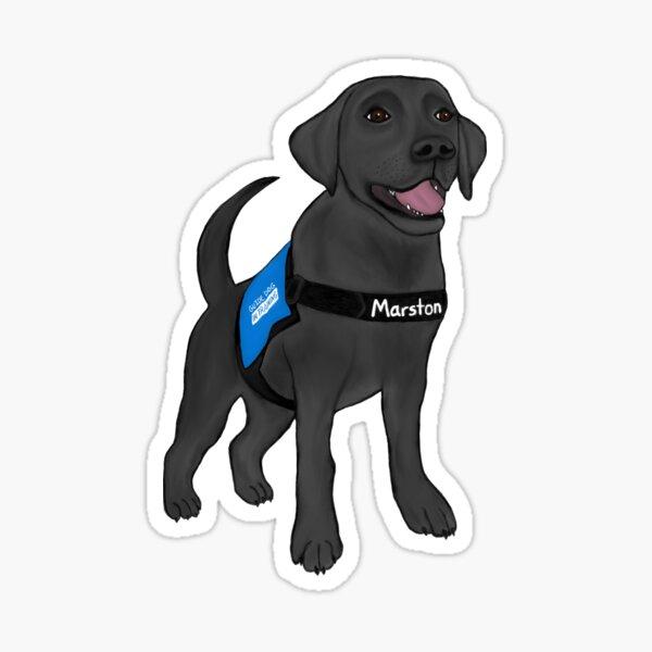Marston (Blindenhund im Training) Sticker