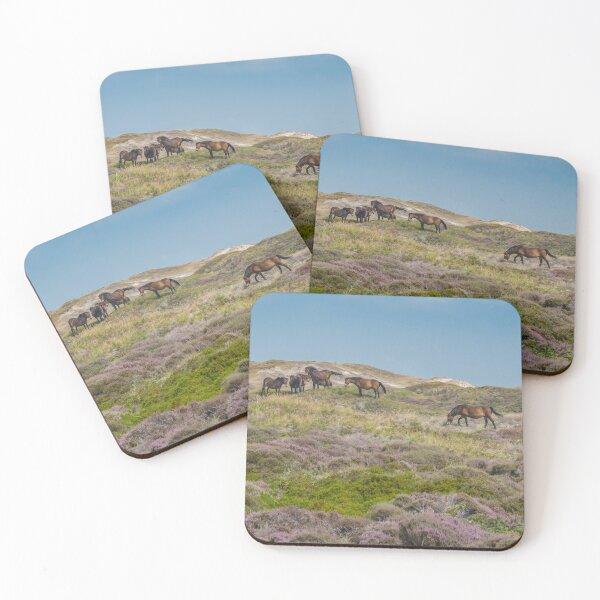 Wild horses on beautiful heathland Coasters (Set of 4)