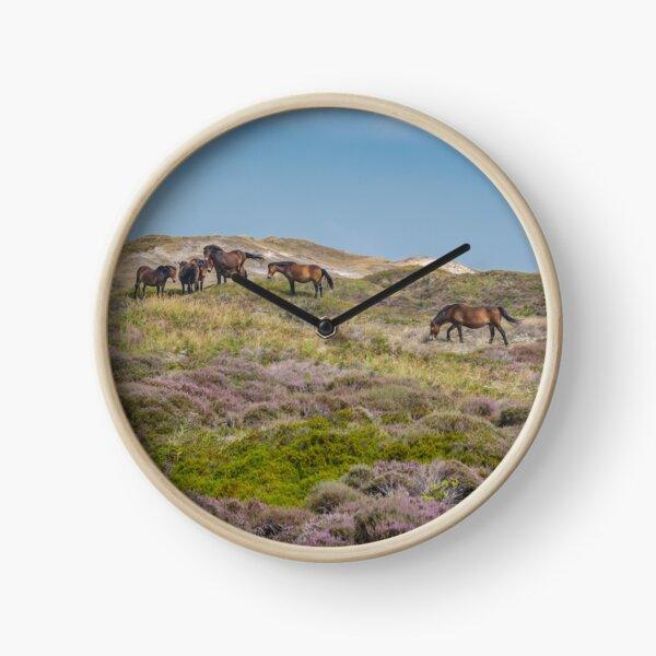 Wild horses on beautiful heathland Clock