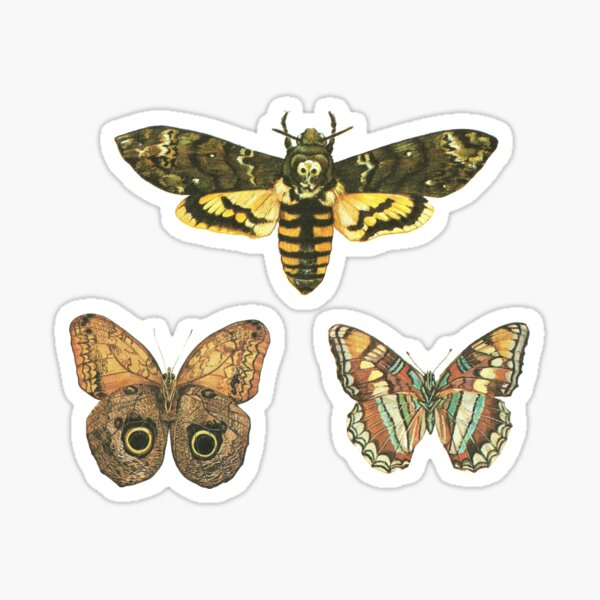Moths - Sticker Pack Sticker