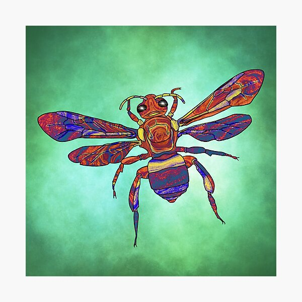 Psychedelic Orchid Bee Photographic Print