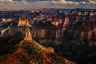 Point Imperial, Grand Canyon National Park by Daniel H Chui