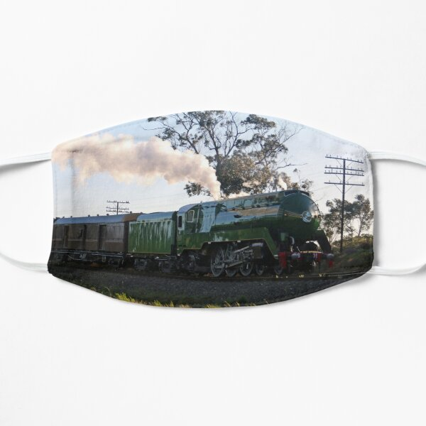 3801 Australian Steam Train being tested along Piction to Goulburn line Mask