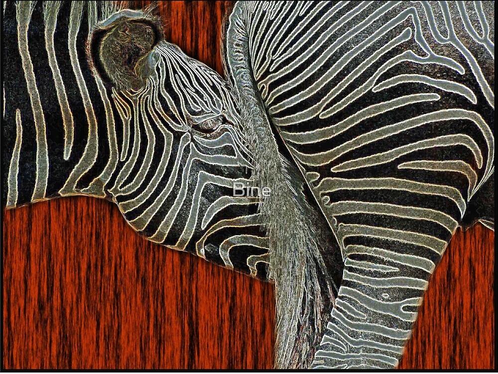Striped Fusion by Bine