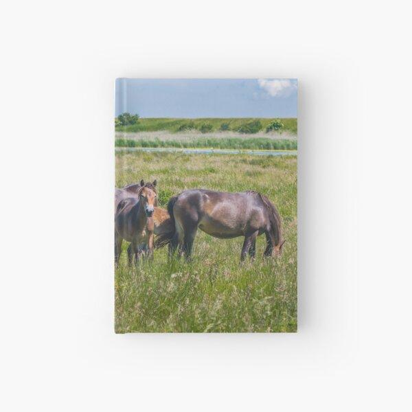 Wild horses enjoying Danish summer Hardcover Journal