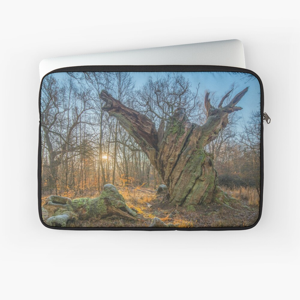Sunrise with dying old oak - or a troll frozen in time Laptop Sleeve