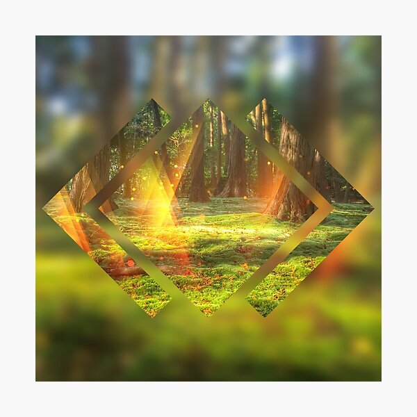 Take Me to the Magic Forest Abstract Geometric Photographic Print