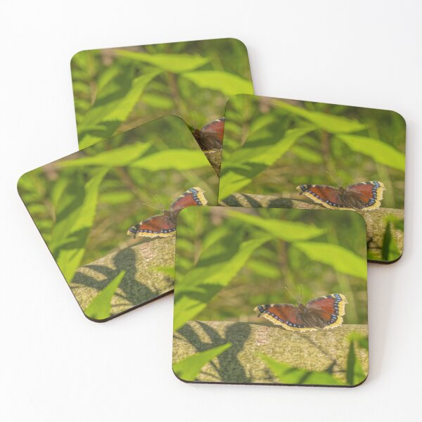Butterfly in the forest: enchanting Mourning cloak Coasters (Set of 4)