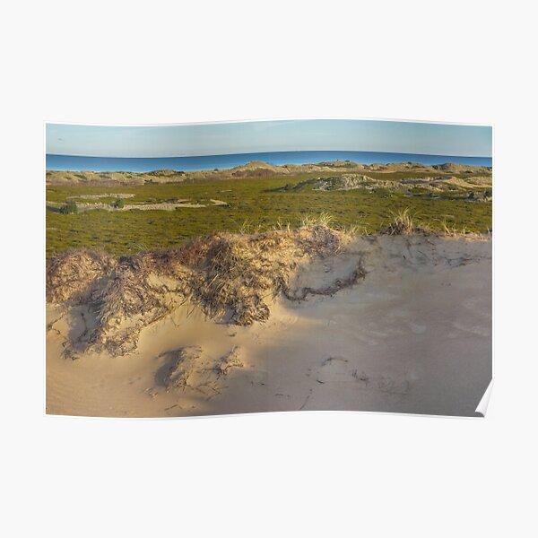Dune. Island landscape Poster
