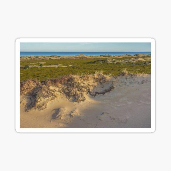Dune. Island landscape Sticker
