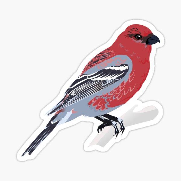 Pine Grosbeak Sticker
