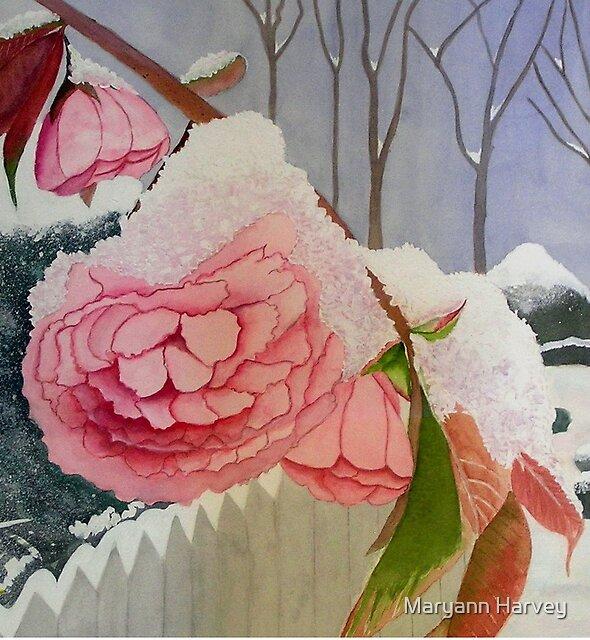 Late Snow by Maryann Harvey