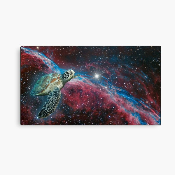 el sueño de la tortuga espacial Lienzo