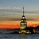 Incredible Istanbul by Zoe Marlowe