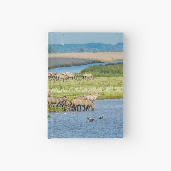 Wild horses roaming free in Oostvaardersplassen Hardcover Journal