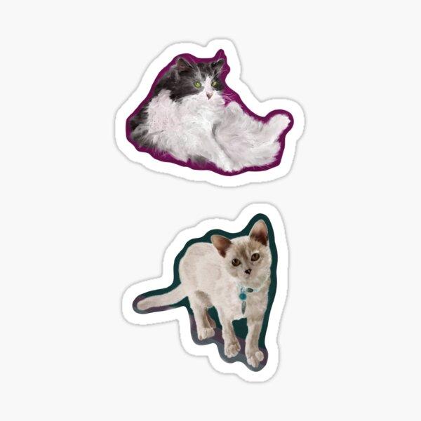 Realistic Cat Sticker Pack Sticker