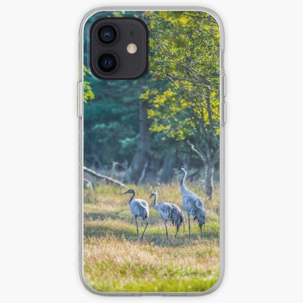 A family of cranes taking a morning stroll iPhone Soft Case