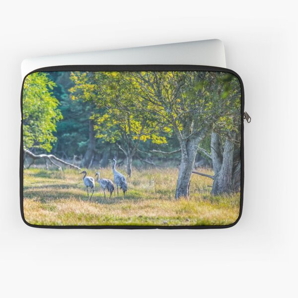 A family of cranes taking a morning stroll Laptop Sleeve