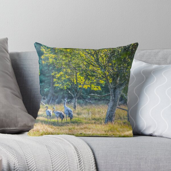 A family of cranes taking a morning stroll Throw Pillow