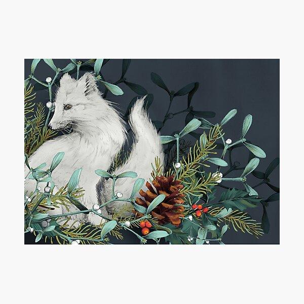Arctic Fox Holiday Portrait Photographic Print