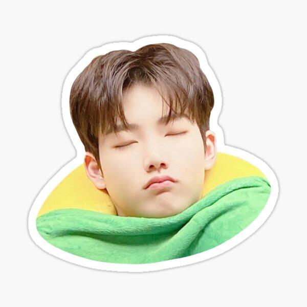 Cute Sleeping Junkyu Yg Treasure Sticker