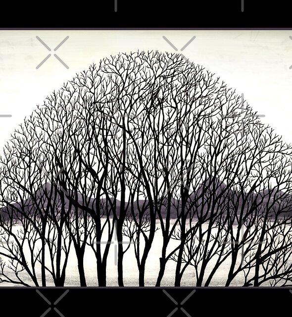 Tree Arch by Sladeside