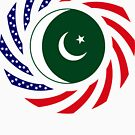 Pakistani American Multinational Patriot Flag Series by Carbon-Fibre Media