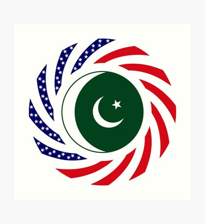 Pakistani American Multinational Patriot Flag Series Art Print