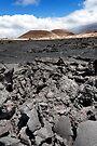 Lava Field  by Alex Preiss