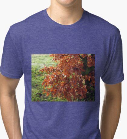 Herbstlaub und mattiertes Feld in Essex Vintage T-Shirt