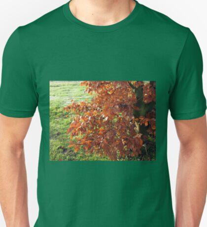 Herbstlaub und mattiertes Feld in Essex T-Shirt