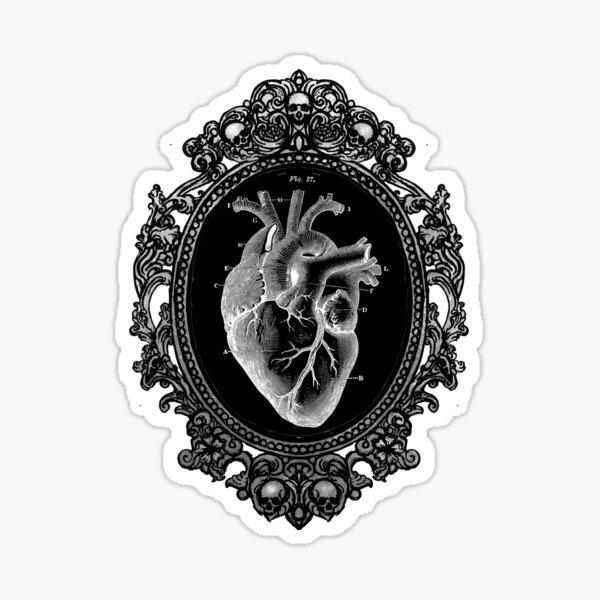 Anatomical Heart in Frame Sticker