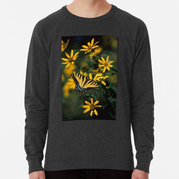 Tiger Swallowtail Butterfly Lightweight Sweatshirt