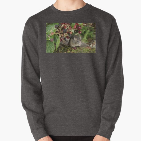 brambles and mouse  Pullover Sweatshirt