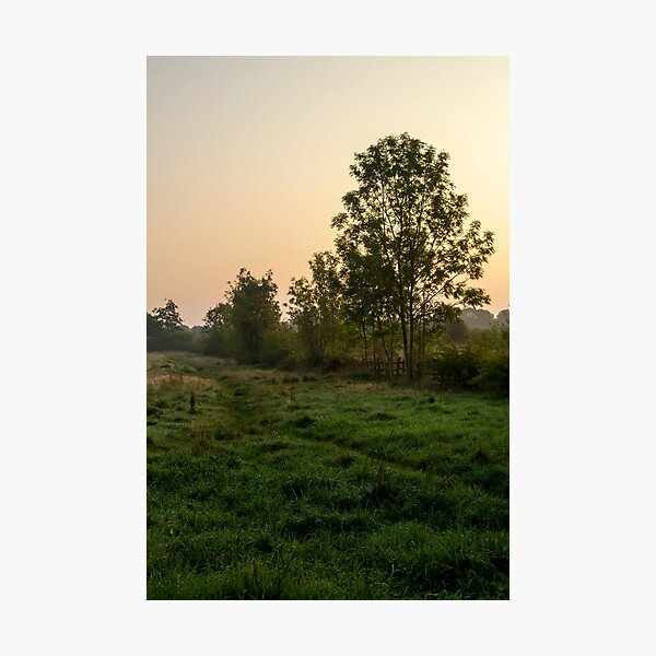 Sunrise over a grassy field near Weelsby Woods in Grimsby Photographic Print