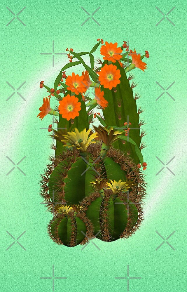 Cacti  by LoneAngel