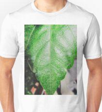 Close-up of a ordinary leaf T-Shirt