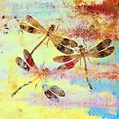 Mauritius Vintage Dragonflies Colours S by Vitta