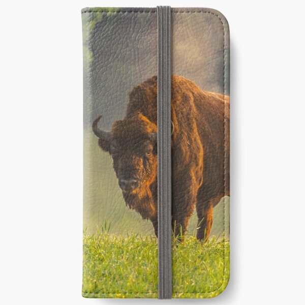 Wisent or european bison steaming in the morning light iPhone Wallet